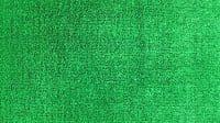 Искусственная трава Дюна Тафт