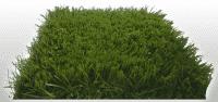 Искусственный газон Maxi Grass 40