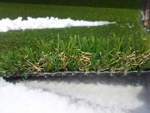 ландшафтная трава
