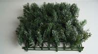 Плитка 50x50 Можжевельник Бело-Зеленый