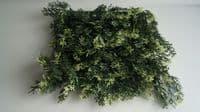 Плитка 50x50 Можжевельник Зеленый