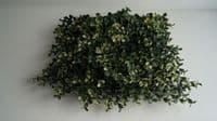 Плитка 50x50 Самшит Бело-Зеленый