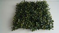 Плитка 50x50 Самшит Желто-Зеленый